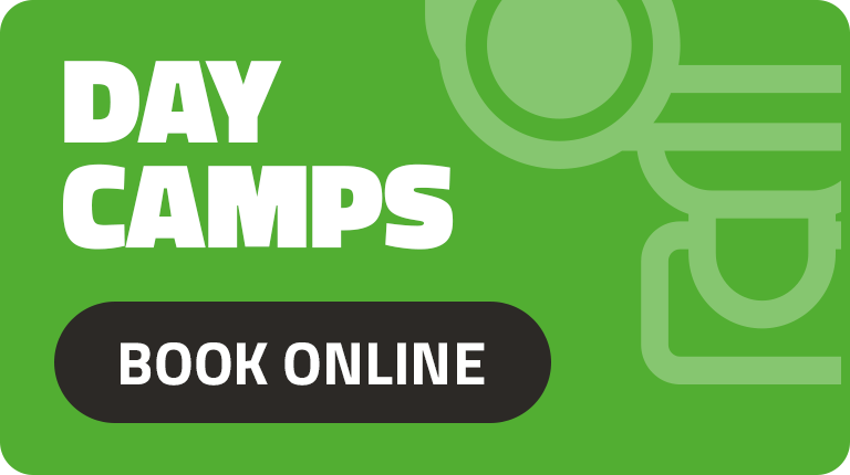 Daytime Camps - Book Online Now!